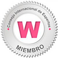 Consejo internacional de Expertos